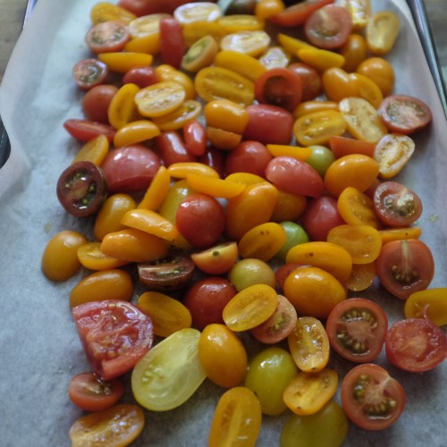 A mixture of tomatoes works well