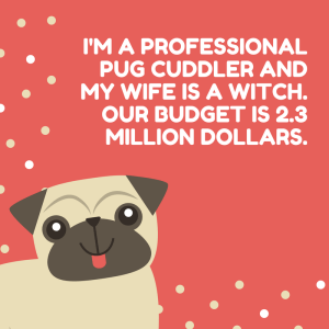 pug cuddler