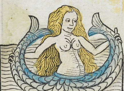 medieval starbucks