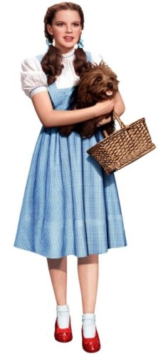 the real dorthy