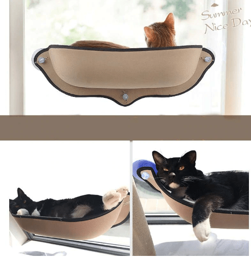 cat hammock for window