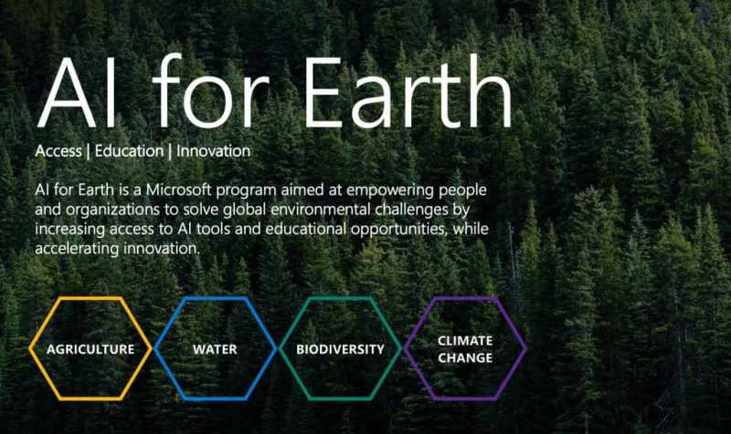 AI for Earth; a forest with AI for Earth