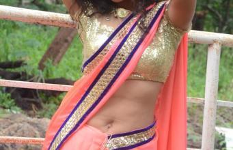 America NRI Actress Sizzling Saree Pics
