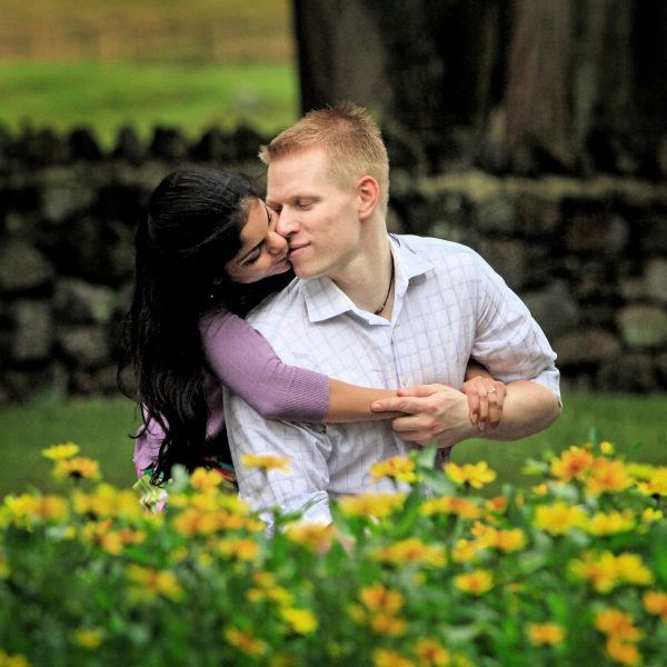 Engagement Photography Cornwall Park affectionate couple framed by yellow flowers and a stone wall