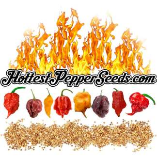 Hottest Pepper Seed Collection Pack - 10 Verities