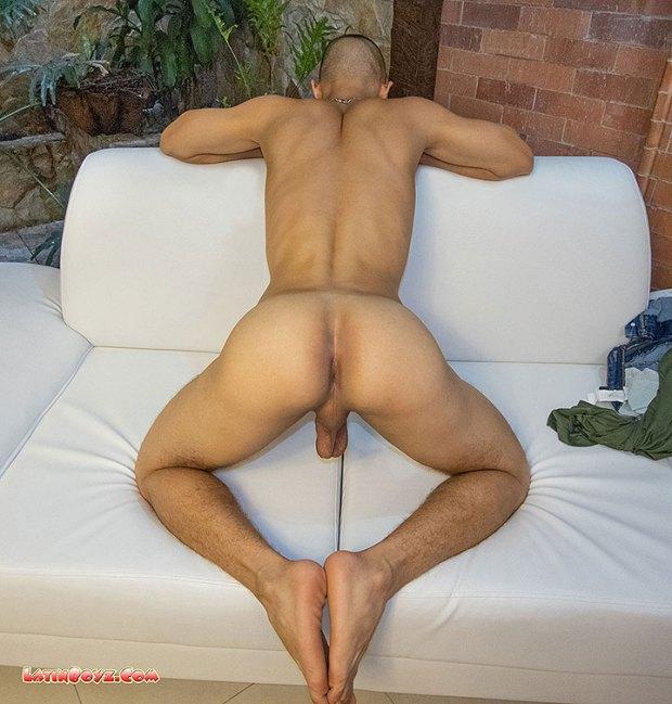 Horse Hung Colombian Hottie Dante