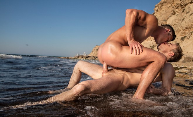 Cock By The Ocean