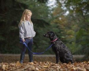work with Dog photographer UK035