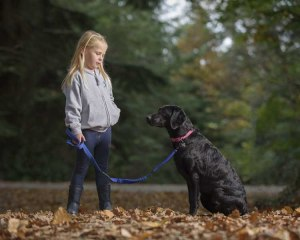 work with Dog photographer UK035