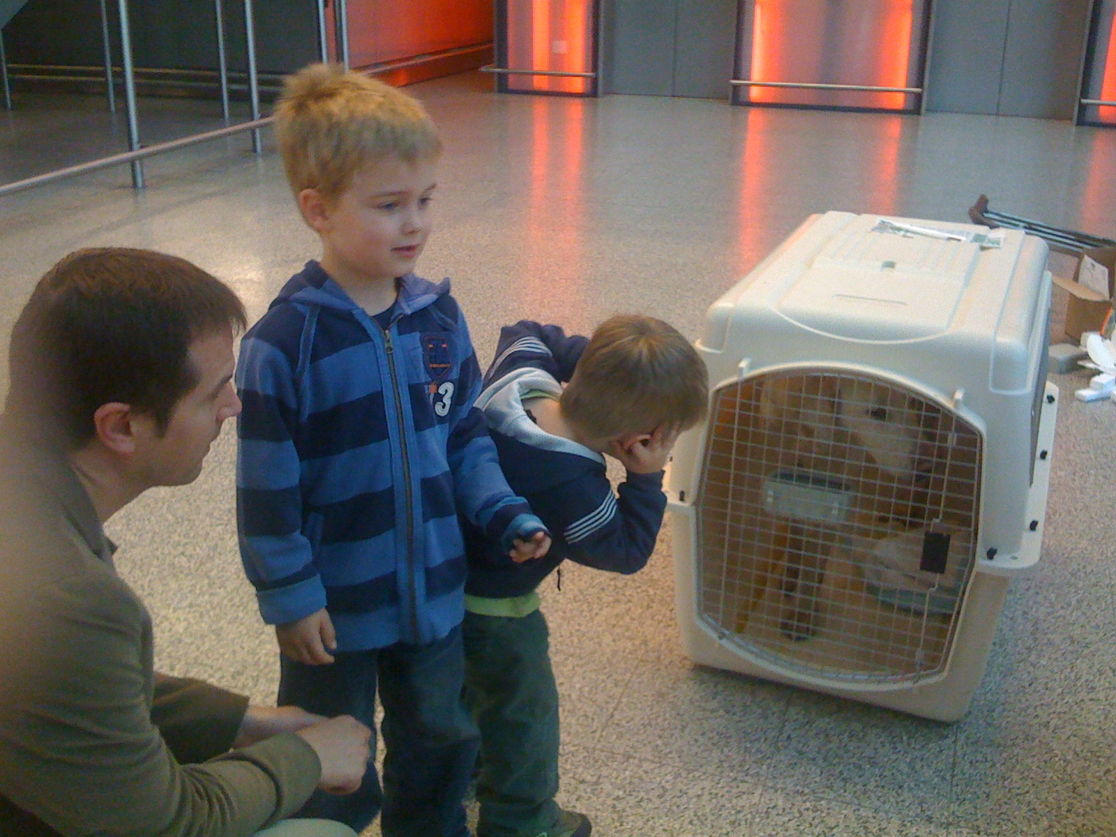 The hounds drew curious crowds and made new friends at Heathrow. Okay, yes, one of them was a little loud!