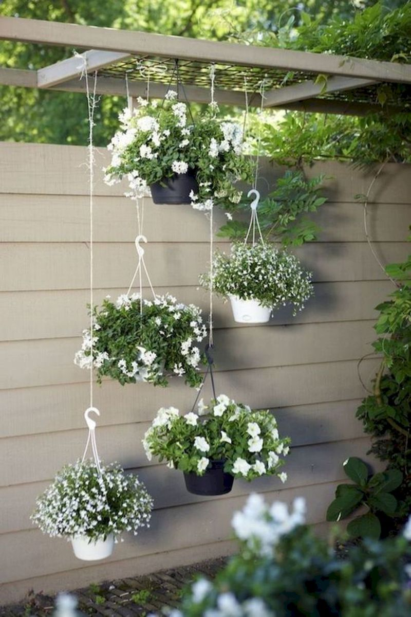 50 Awesome Modern Backyard Garden Design Ideas With Hanging Plants