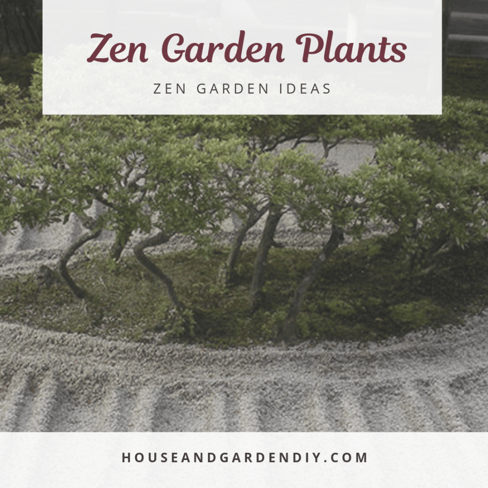 small zen garden ideas