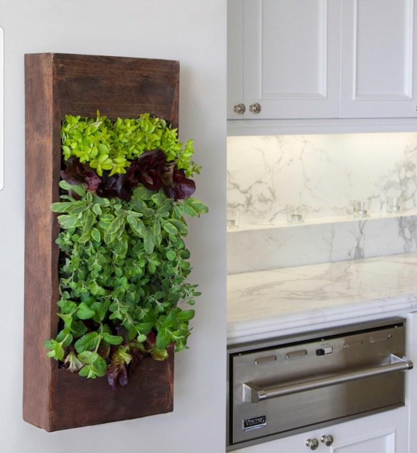 small deck garden ideas