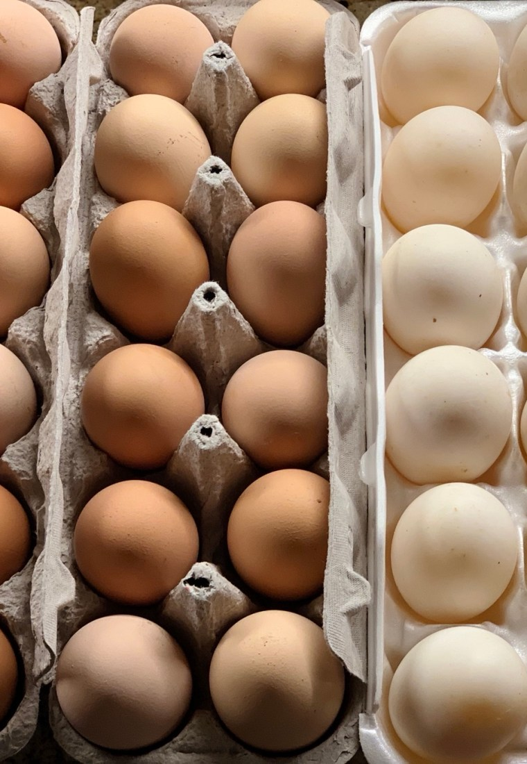 What We Love About Duck Eggs vs Chicken Eggs