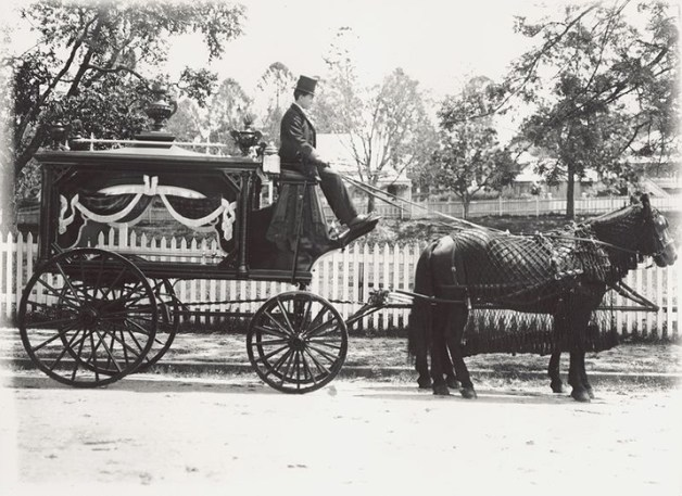 antique horse drawn hearse