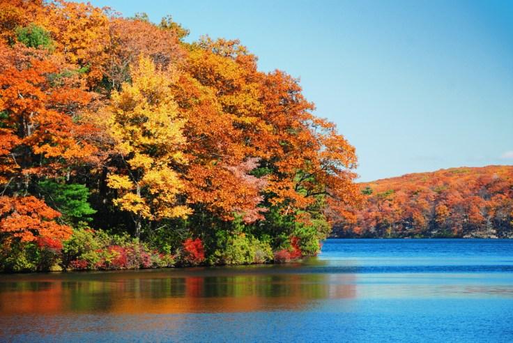 fall colors in Ontario