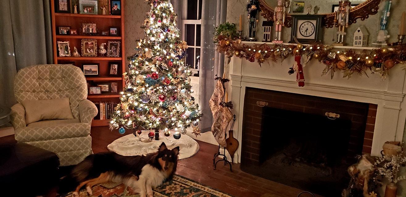 the coziest Christmas interiors