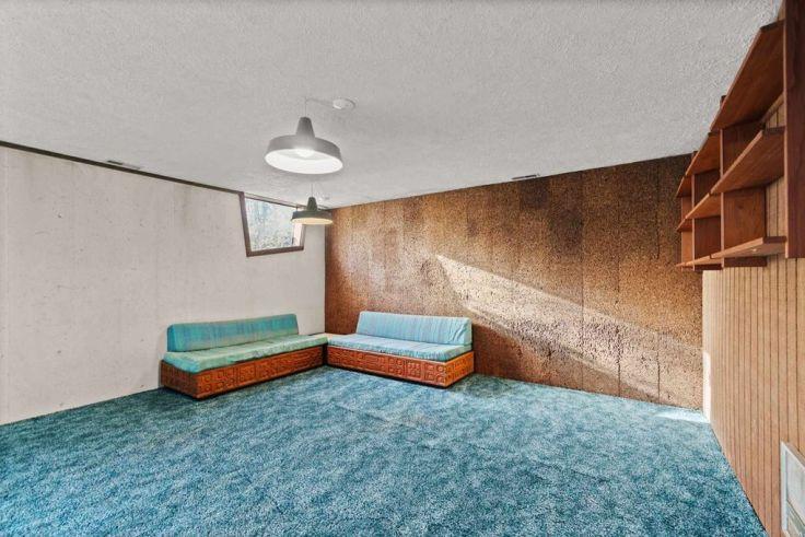 1970's shag carpet