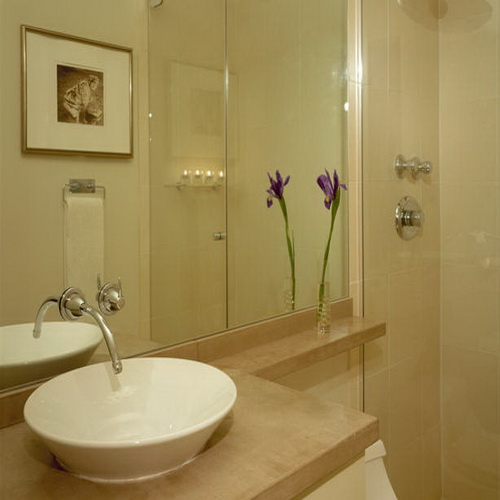 Small Bathrooms Remodels Ideas on a Budget ... on Simple Small Bathroom Ideas  id=71373