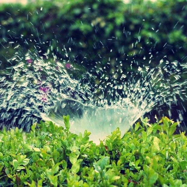 Sprinkler System Inspection Minimums