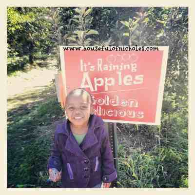 My Ladybug Is Four | County Line Apple Orchard