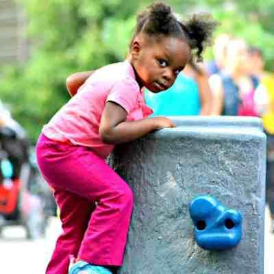 Brookfield Zoo Celebrates #SummerNights #BZBloggers