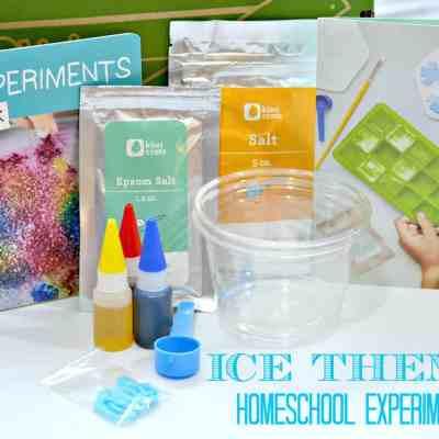 Home School Ice Unit