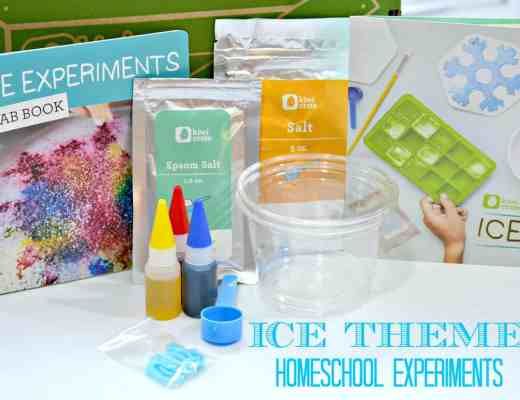 Ice Themed Homeschool