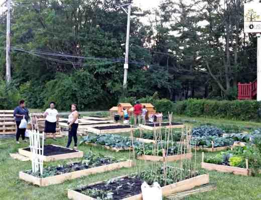 Union Avenue Community Garden