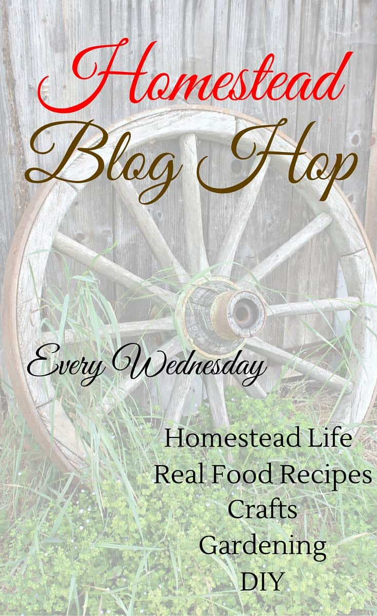 Homestead Blog Hop