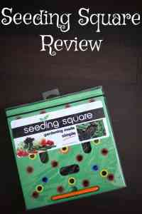 Seeding Square Review