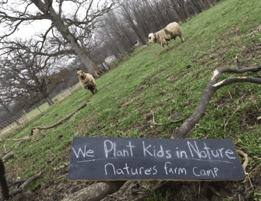 Nature's Farm Camp