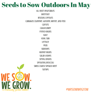 Seeds to Sow Directly in May