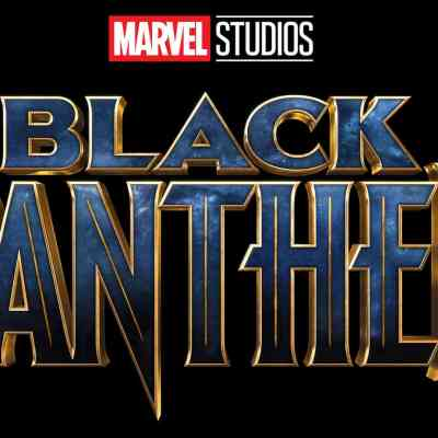 The Importance of Black Panther to Our Houseful