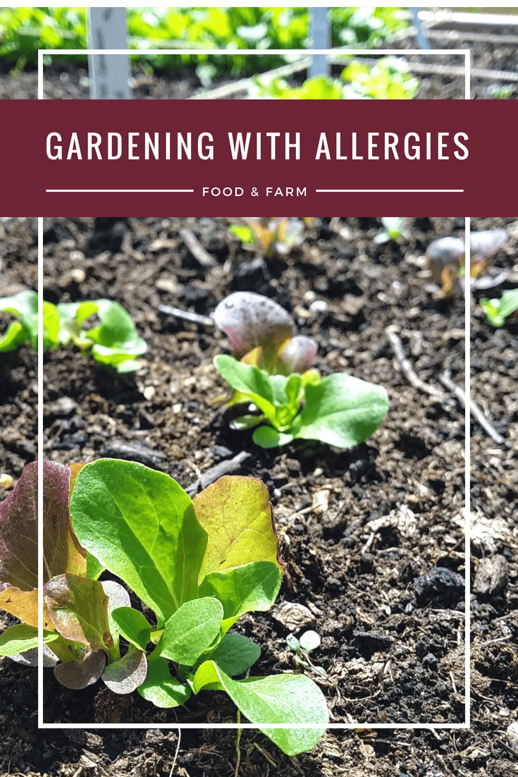 How to Garden With Allergies