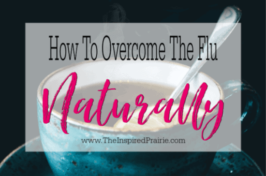 Homestead Blog Hop Feature - How to Overcome the Flu Naturally