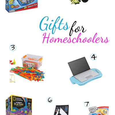 Homeschoolers Gift Guide