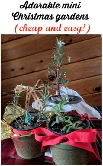 Homestead Blog Hop Feature - Feathers in the Woods