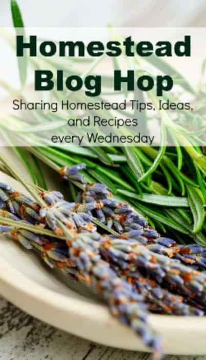 Homestead Blog Hop - Homestead tips, ideas, animal care, and recipes every Wednesday