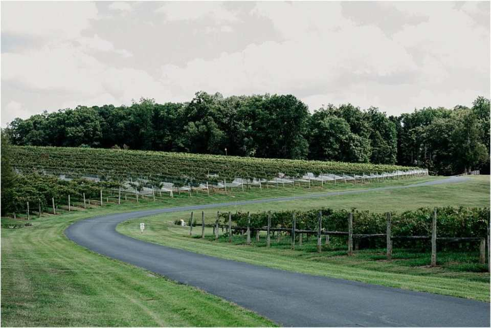 Virginia Dog Friendly Wineries