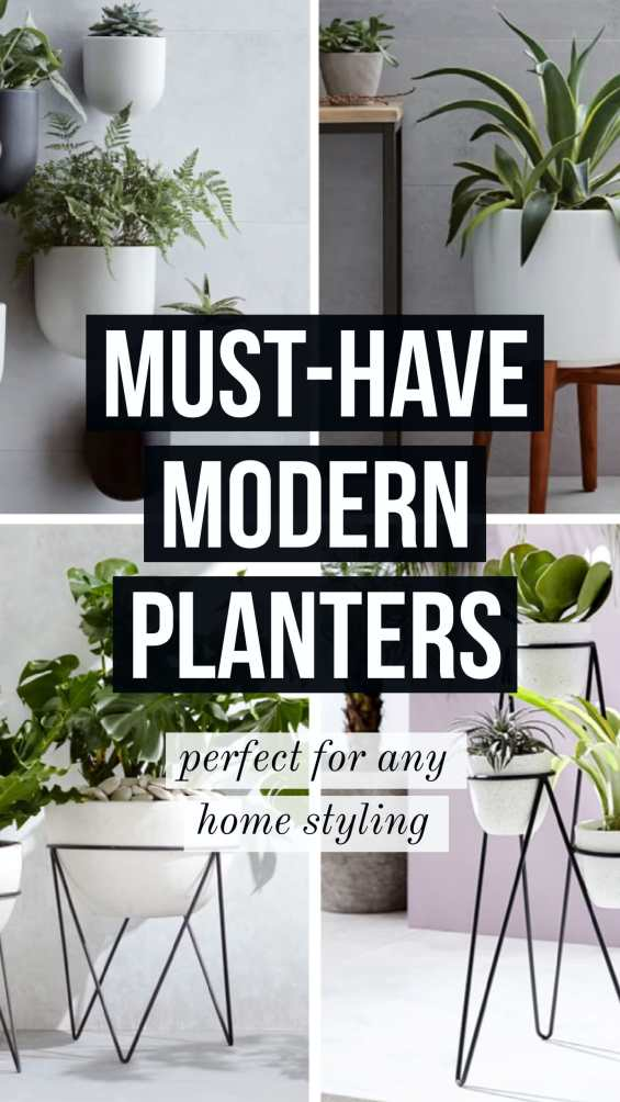 modern planters for your home
