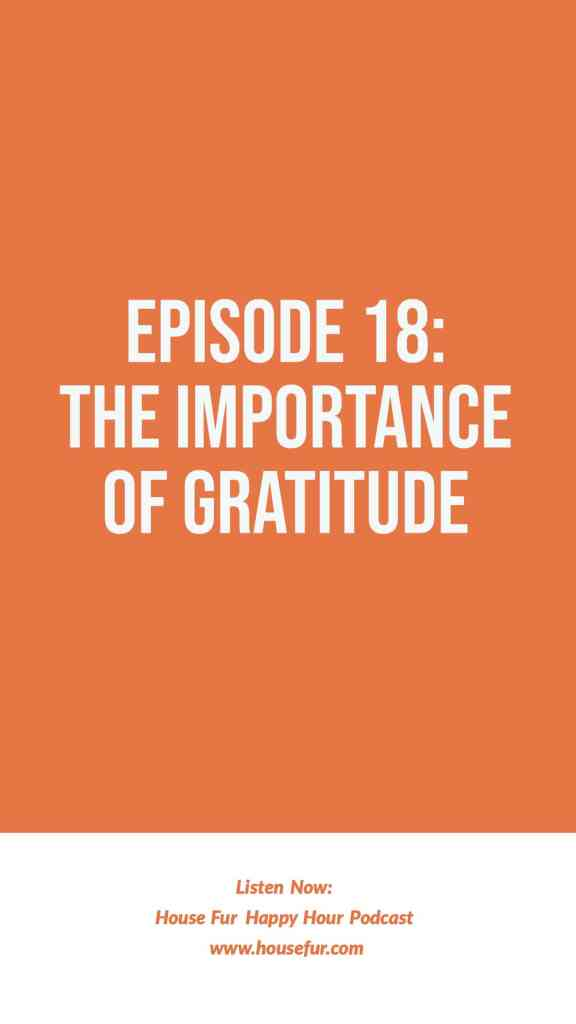 importance of gratitude and taking responsibility for your own success