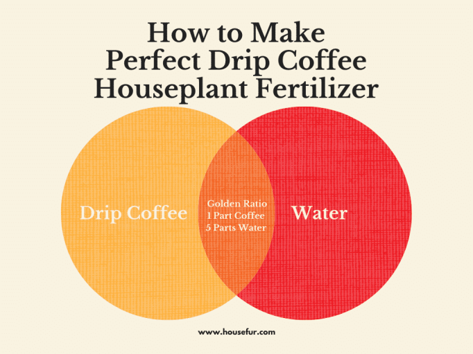 coffee for houseplants