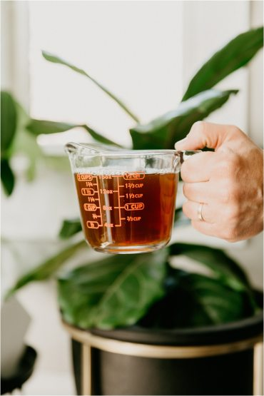 coffee for houseplants natural fertilizer