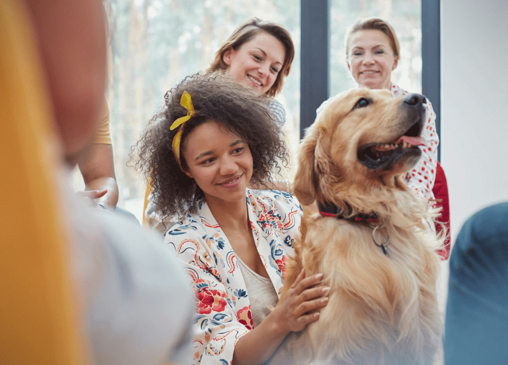 therapy dog requirements