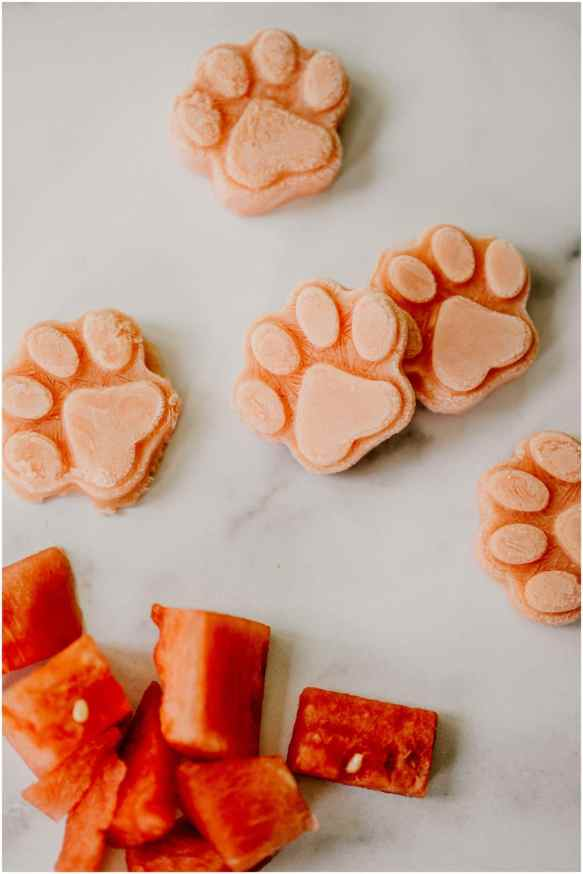watermelon-frozen-dog-treats_0359