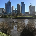 We hired bikes and pedalled along the Yarra for an hour.