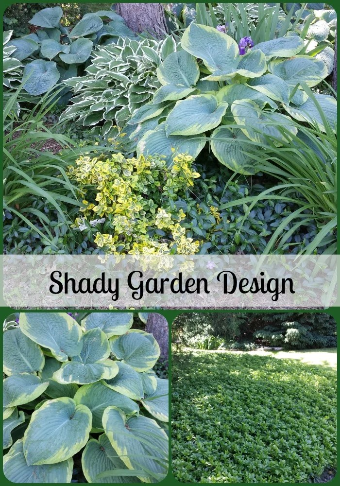 Our Garden Design with Hosta and Ground Cover on Shady Yard Ideas  id=86000
