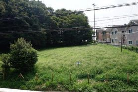 Japan real estate Ōme 青梅 house green space
