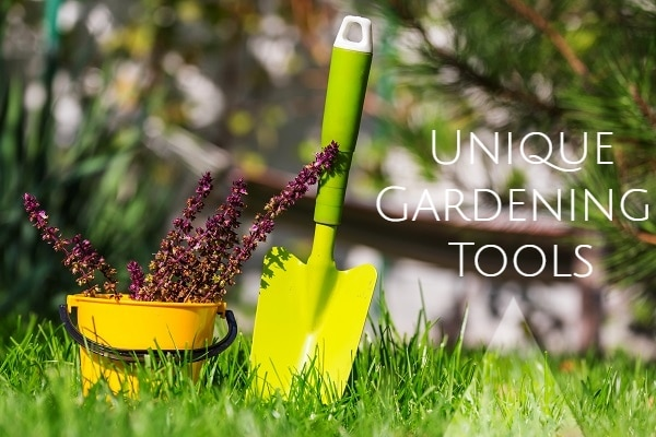 7 Useful And Unique Gardening Tools